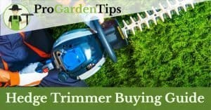 best hedge trimmer reviews