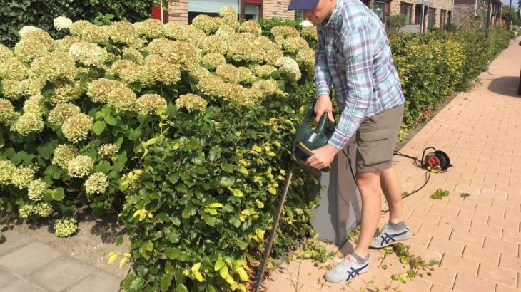 best corded electric hedge trimmer