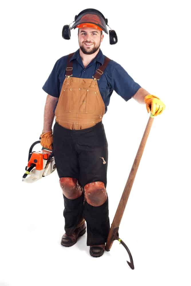 chainsaw safety ppe