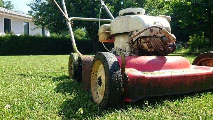 used hedge trimmer for sale good idea