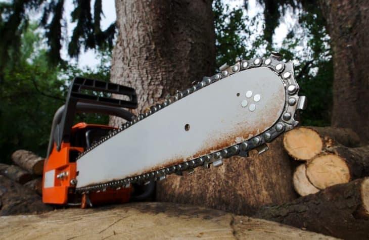 chainsaw guide bar length