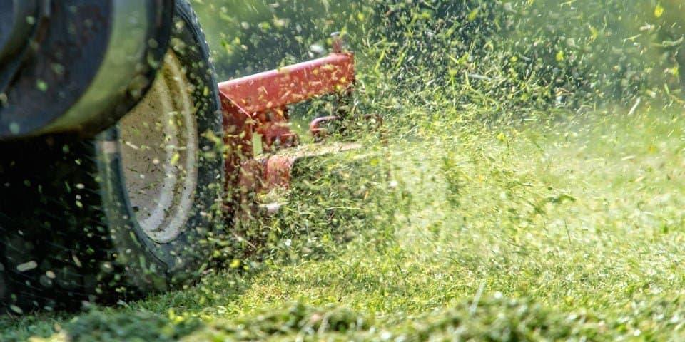 best lawn mower for mulching