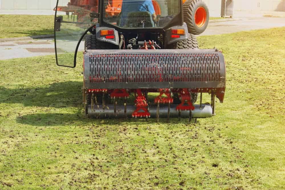 how often should you aerate the lawn