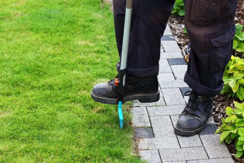 edging the lawn using half moon spade cutters