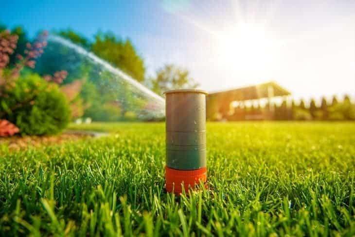 pop up sprinkler in lawn