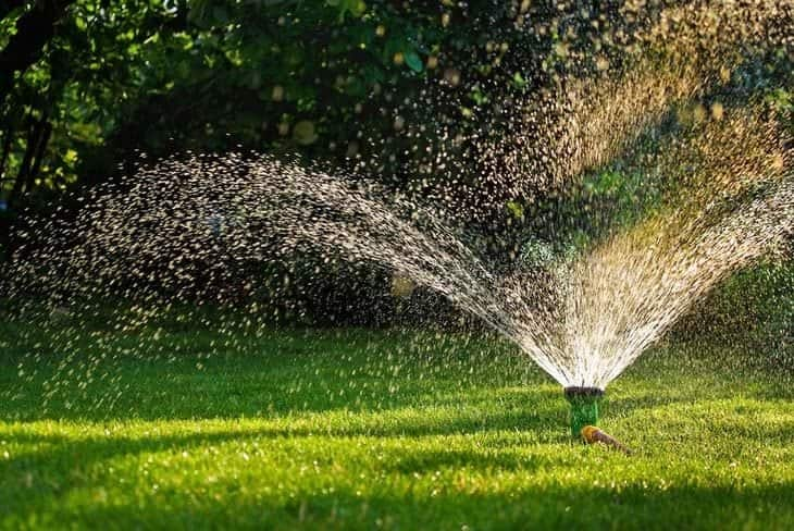 watering the lawn after winter