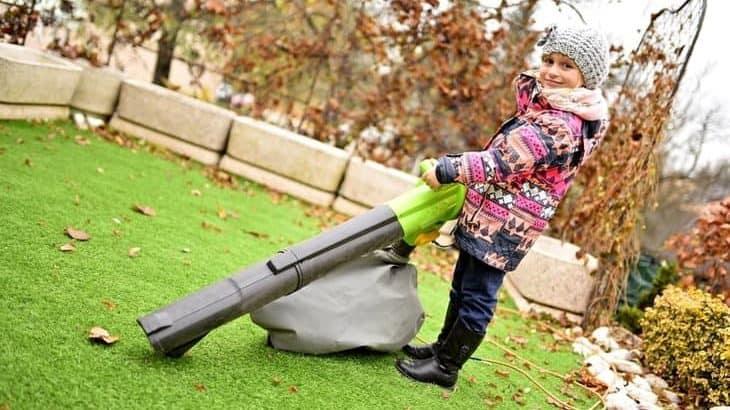 Leaf blower vs Leaf Vacuum
