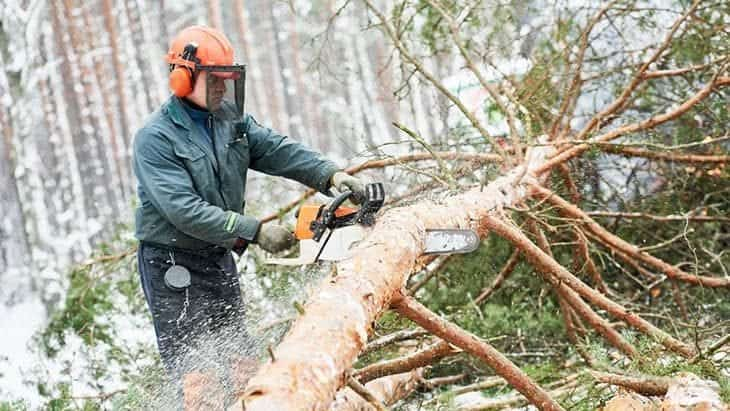 chainsaw safety helmet reviews