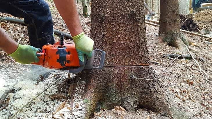 chainsaw gloves reviews