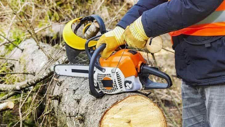chainsaw gloves safety standards