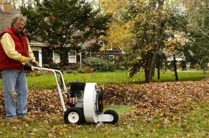 use a leaf blower to clear your yard