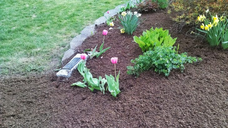 benefits of laying mulch in fall