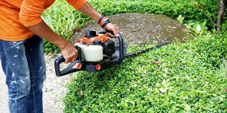 what can hedge trimmers be used for