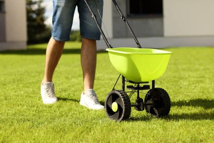 fertilize lawn before winter