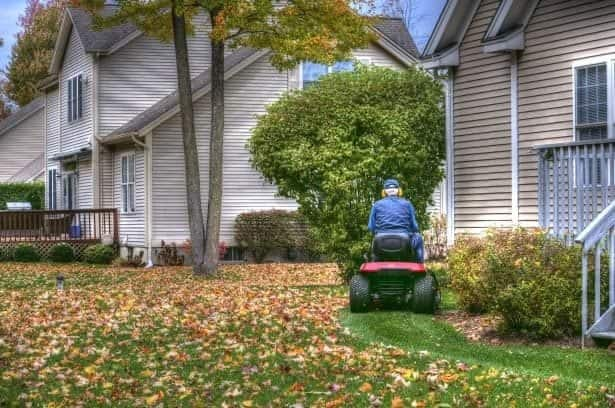 getting rid of leaves with lawn mower