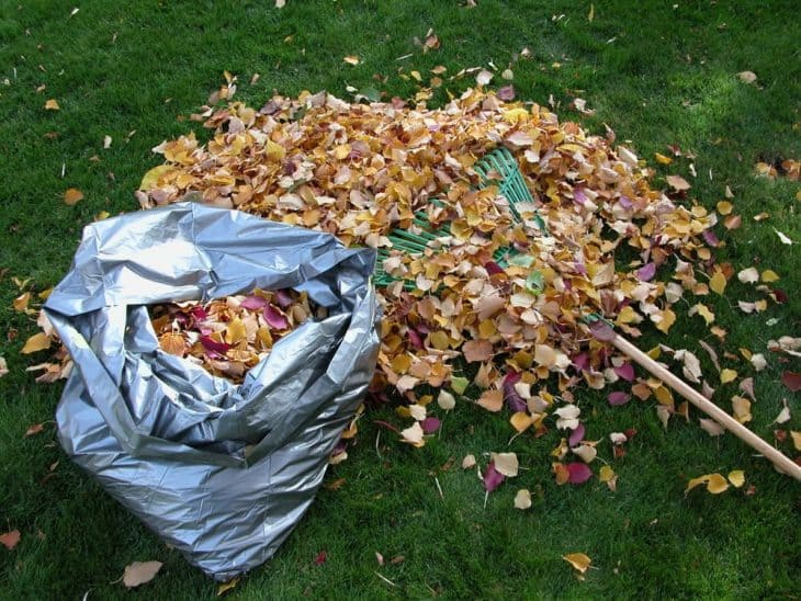 can wood chippers shred leaves