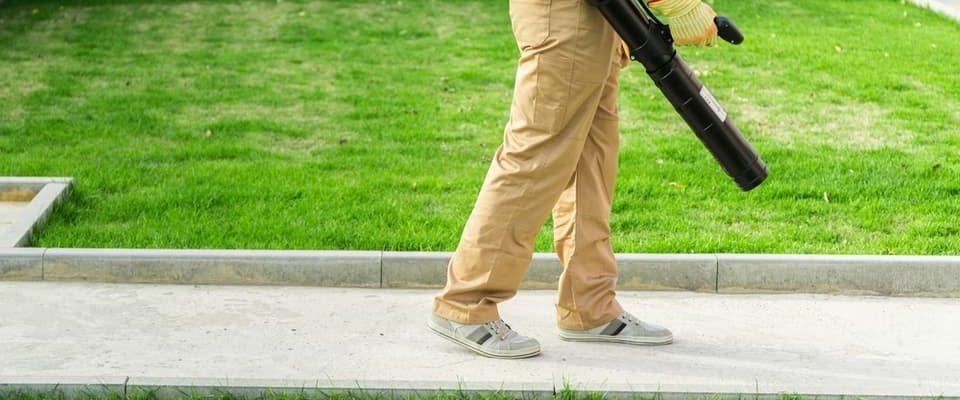 residential backpack leaf blower