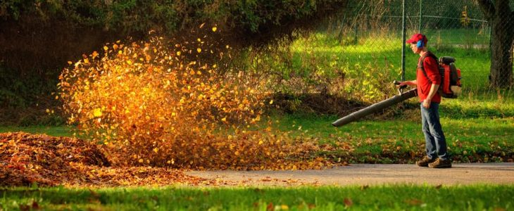 commercial backpack leaf blower reviews