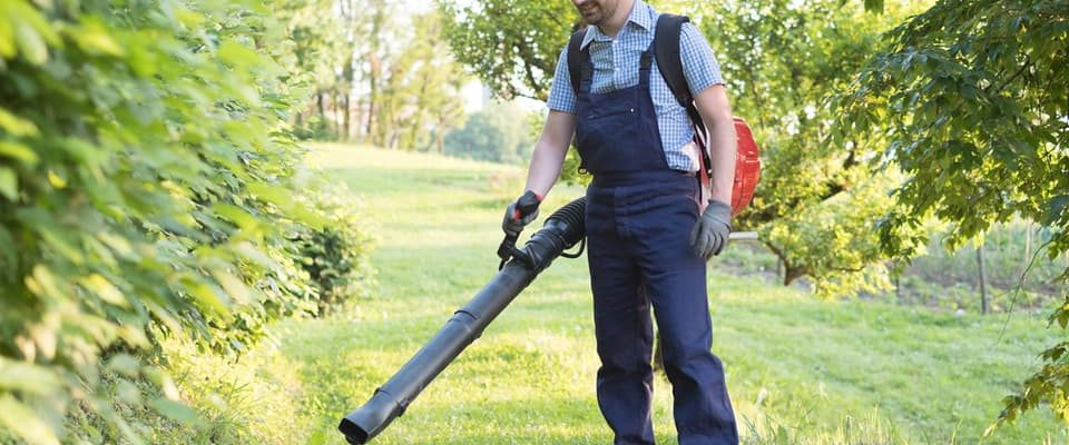 best commercial backpack leaf blower working in orchard